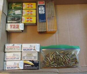 22 long rifle ammunition