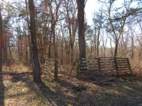 Home & 20+/- Private Wooded Acres Sells To High Bidder - Rocheport, MO - 11
