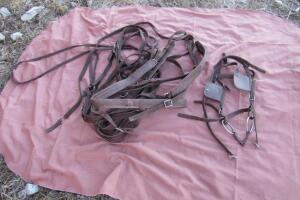 Nylon driving headstall with O-ring snaffle
